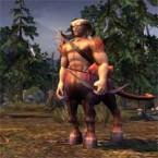 Heroes 5 Centaur